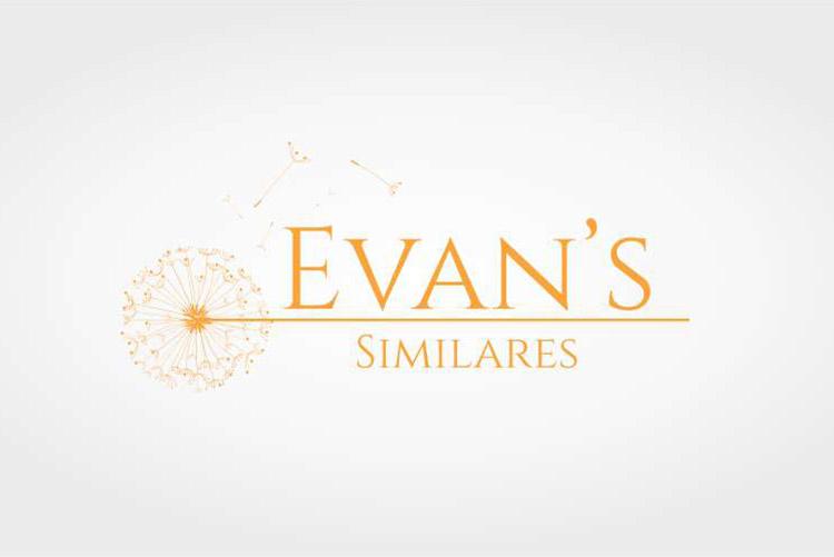Criação de logotipo Evans Similares